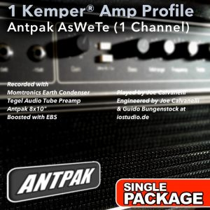 Kemper Amp Profiles-AsWeTe-Single
